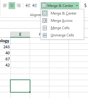 Micro Excel